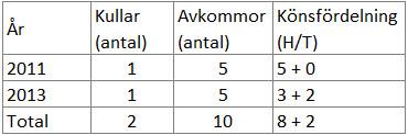 Alva-antal kullar